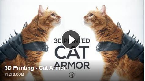 ปริ้นท์ชุดเกาะแมวด้วย 3D Printer